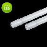ECO Neon LED 10W G13 60cm Alb Rece