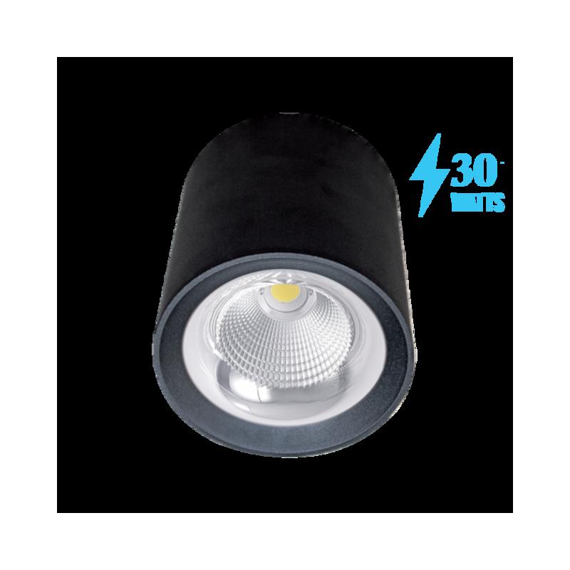 Spot LED 30W Lumina Naturala Montaj Aplicat