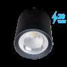 Spot LED 20W Lumina Naturala Aplicat pe tavan