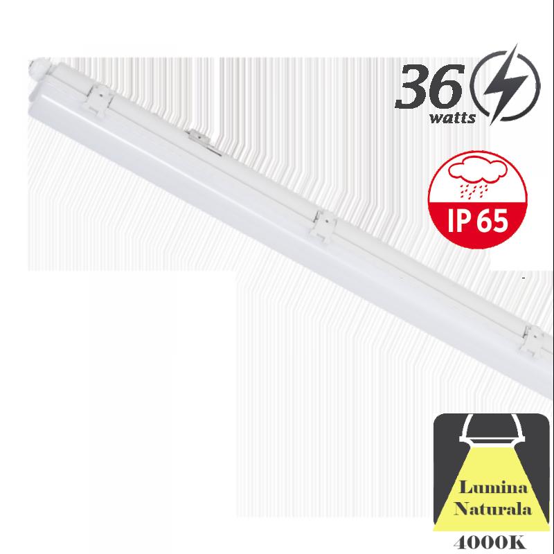 Corp Iluminat LED IP65 36W (1200mm)
