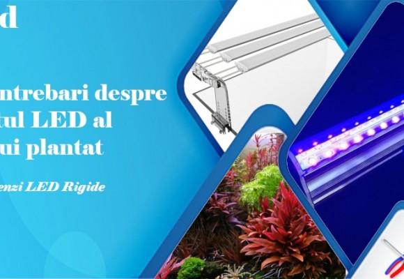 Top 15 Intrebari si raspunsuri despre iluminat LED acvariu plantat